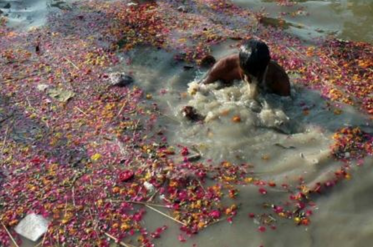 ganga-river-polluted