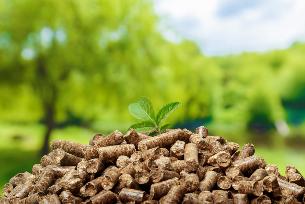 wooden-pellets-are-eco-friendly-and-recyclable